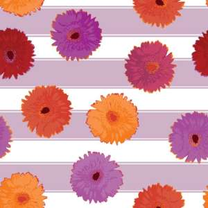 JHD_FB_CLAIR_FALL_gerber-daisy-stripe