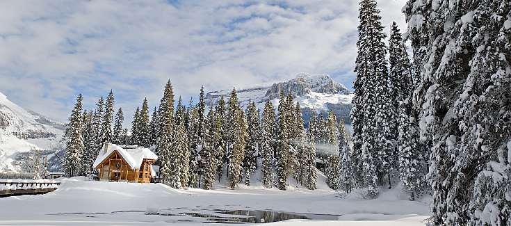 Field BC Winter