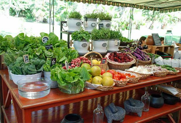 Farmer's market Cabo