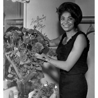 Happy Birthday Nancy Wilson.