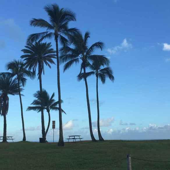 PhotobyJodyWatley_HawaiianLandscape