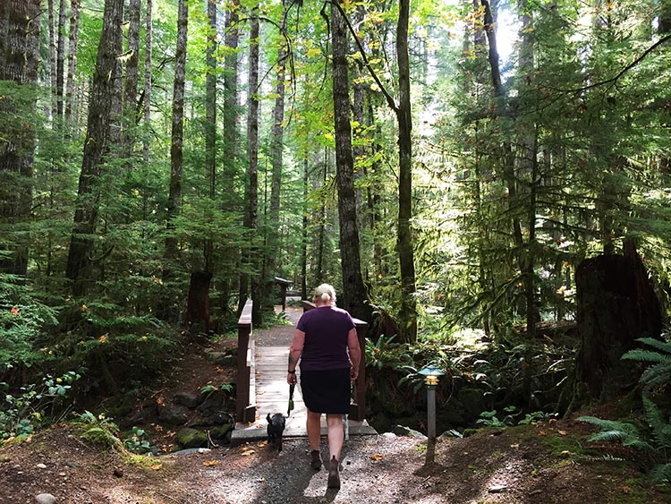We did a short hike around Gordon Bay Provincial Park, to check out the RV sites