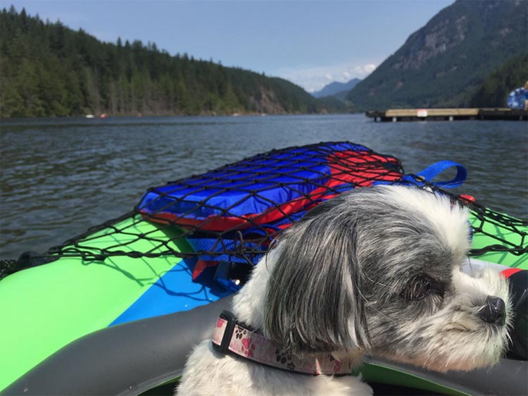 Review of Anmore Camp and RV Park, Near Vancouver. We even took Ripley kayaking once. Hard to say if she enjoyed it or not