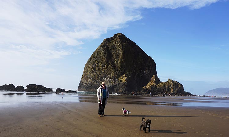 Review of Fort Stevens State Park, Northern Oregon Coast. Canon Beach was one of the most spectacularly beautiful beaches we have ever seen.