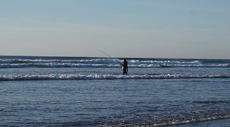 At Peter Iredale Beach, we saw an intrepid fisherman up to his thighs in hip waders