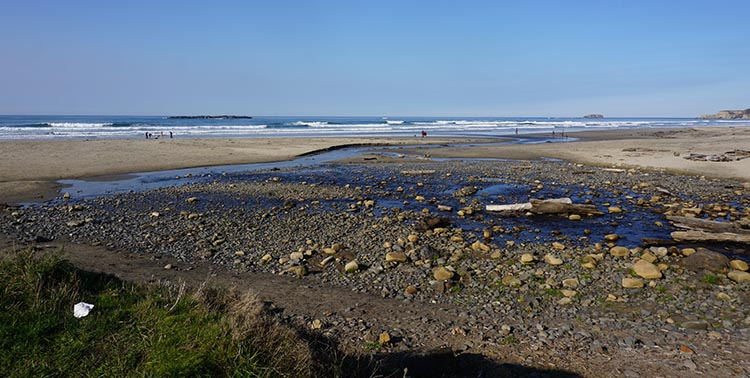 Review of Beverly Beach State Park, near Newport, Oregon. This is Beverly Beach, right by the park