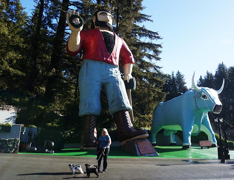 Maggie and the dogs walking past the giant statues of Paul Bunyan and his blue ox, Babe