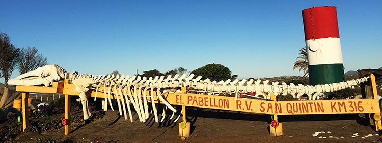 El Pabellón RV Park has some very distinctive features, including this whale skeleton