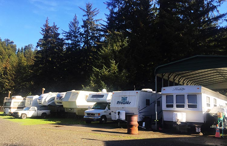 Review of Mystic Forest RV Park, near Klamath, California. The park also offers RV storage, so there is a row of slowly rusting RVs, which contribute to a bit of a rundown feeling