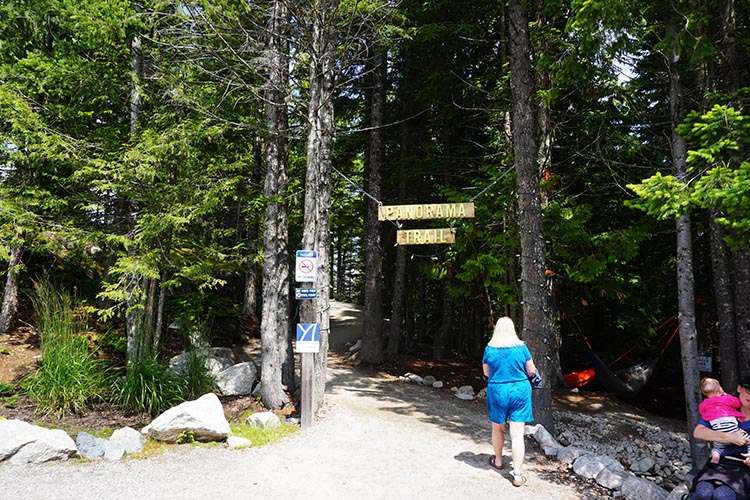 This is Maggie at the entrance to one of the many hiking trails at the summit of the Sea to Sky Gondola