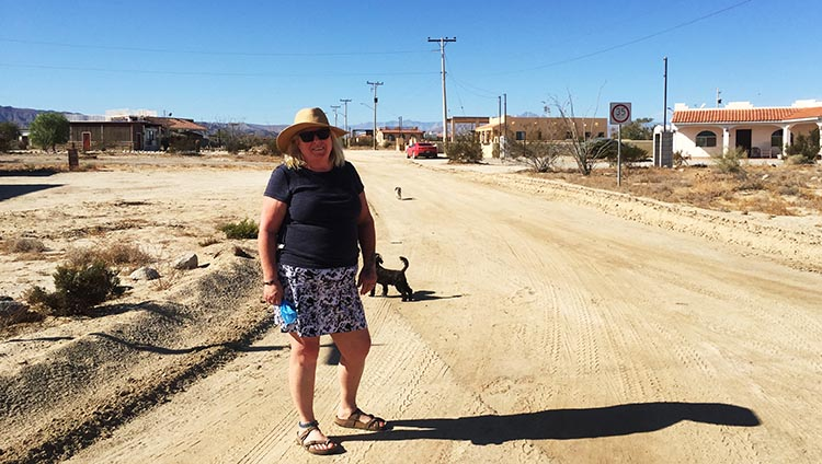 This is our neighborhood at El Dorado Ranch. We walk the dogs in the middle of the dirt roads, to avoid the burs