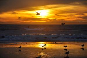 HB_Sunset_3