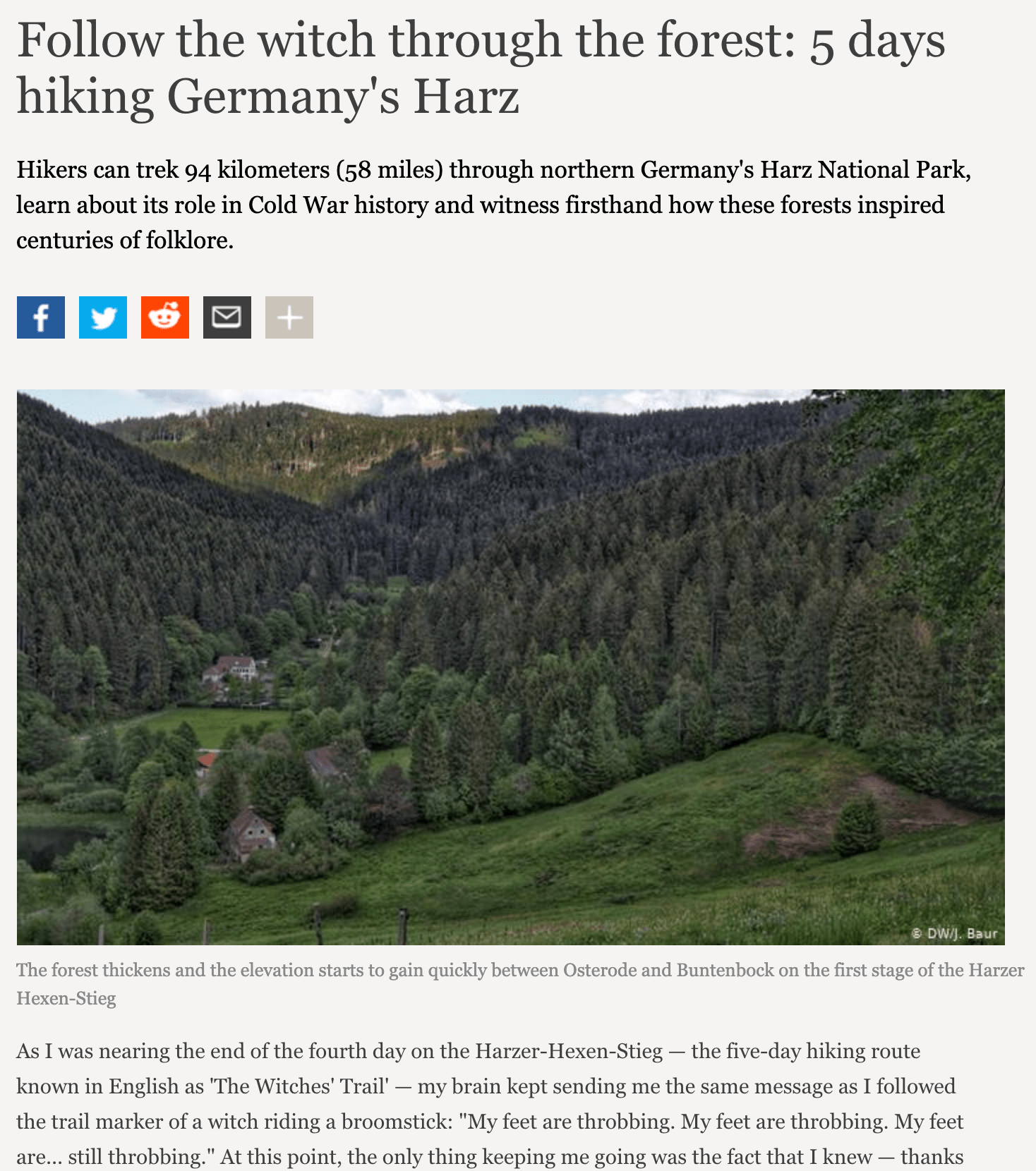 Follow the witch through the forest | 5 days hiking Germany's Harz - Deutsche Welle