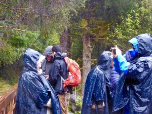 our photography group in Juneau at a park/rain forest, with ponchos to guard against the driving rain