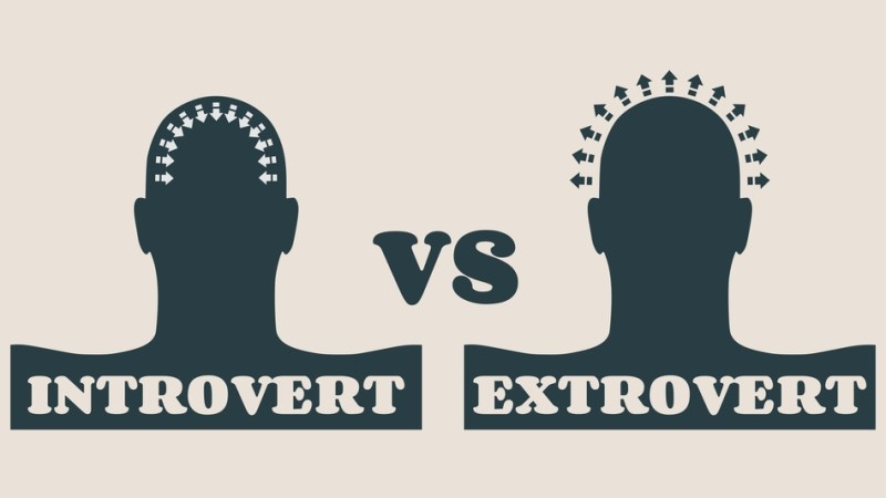 Introversion vs. Extroversion