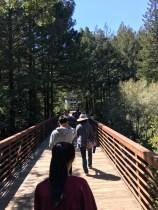 hiking through summer camp
