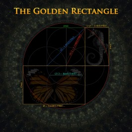 Golden Rectangle seahorse!
