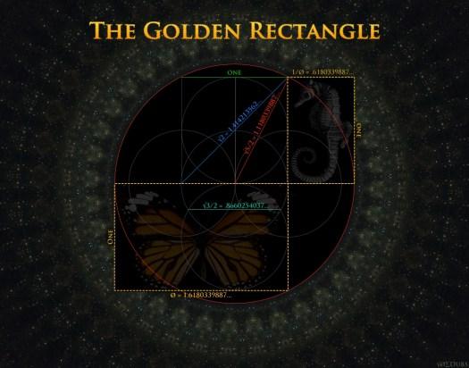 Golden Rectangle seahorse!