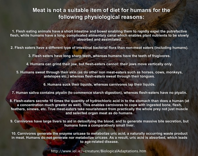 Meat isn't fit for Human Consumption