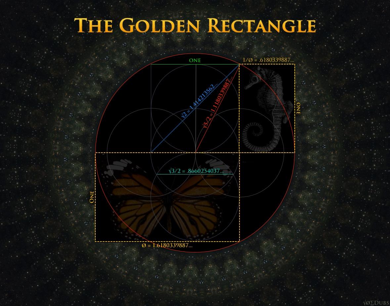 Golden Rectangle Butterfly