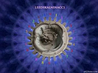 Leedskalninacci