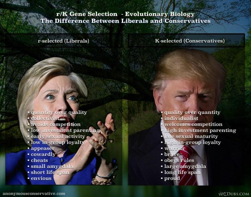 rk-gene-selection-trump-hilliary