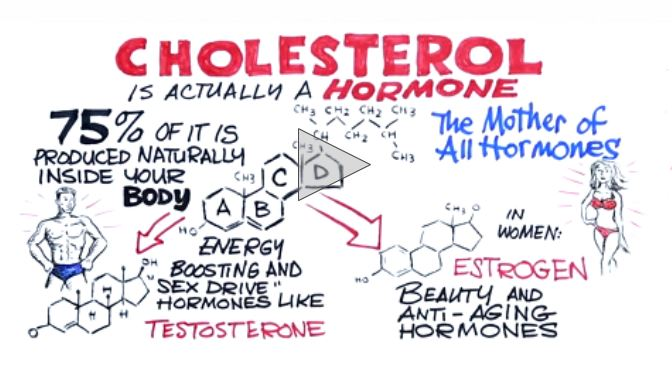 https://i1.wp.com/joedubs.com/wp-content/uploads/2017/05/CholesterolIsAHormone.jpg?ssl=1