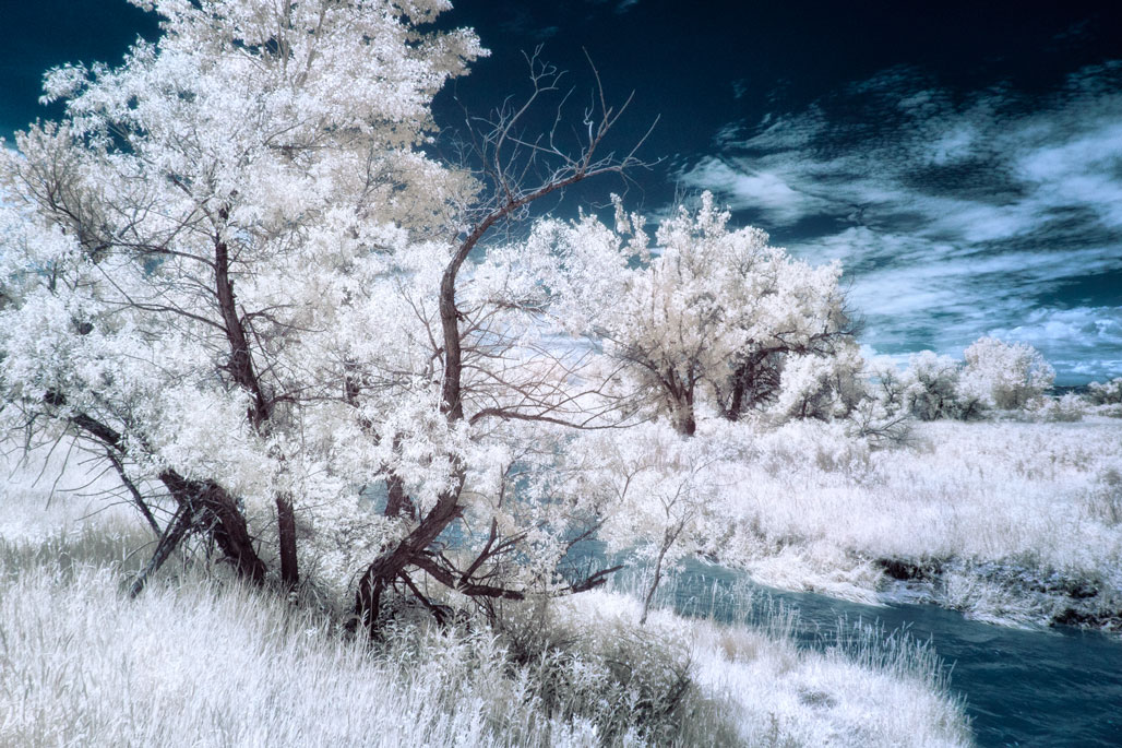 Infrared Image Files: Process or Not Process