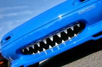 Kissing Frogs: The Automotive Version