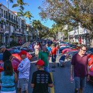 Crowds and Cars in the Sunshine State