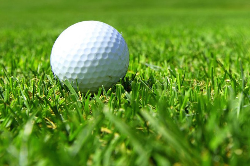 Sturgis girls golf team 12th, Three Rivers' Taylor 12th individually after first round at Division 3 state finals