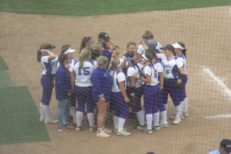 Schoolcraft softball falls to top-ranked Millington in state final