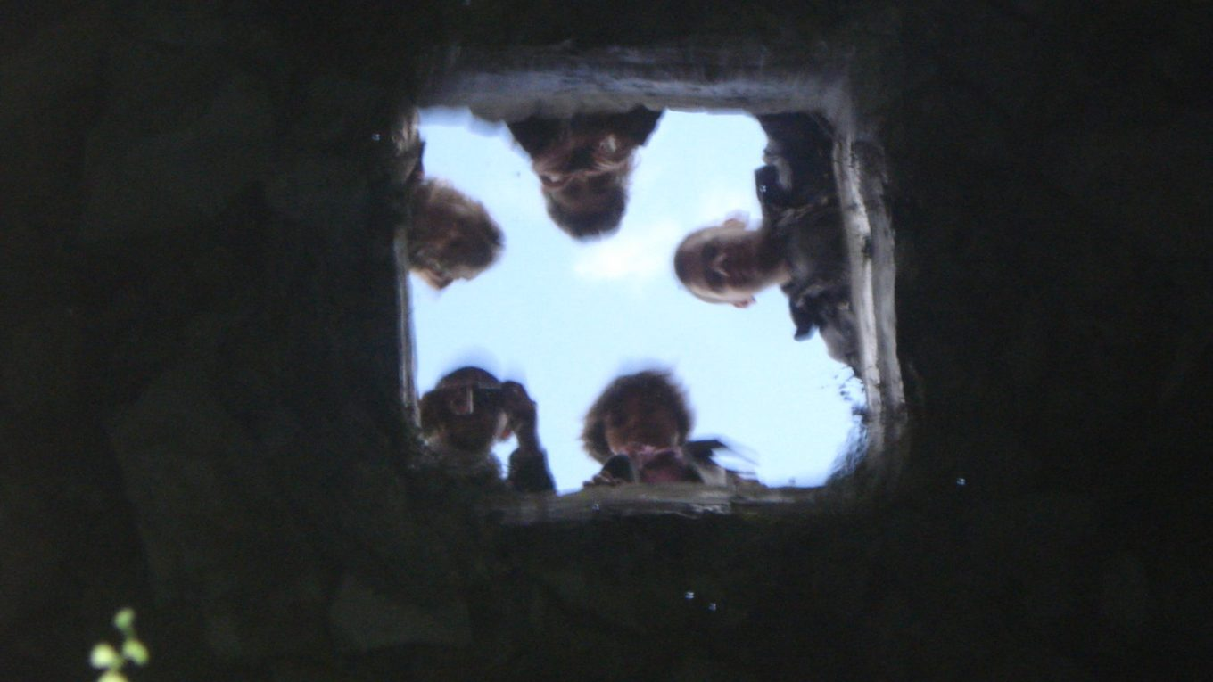 A group's reflection in a well.