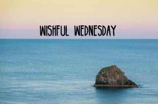 Wishful Wednesday Local Business Scoop