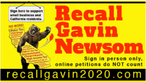 Recall Gavin Newsom 2020 recallgavin2020.com