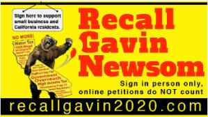 Recall Gavin Newsom 2020 recallgavin2020.com
