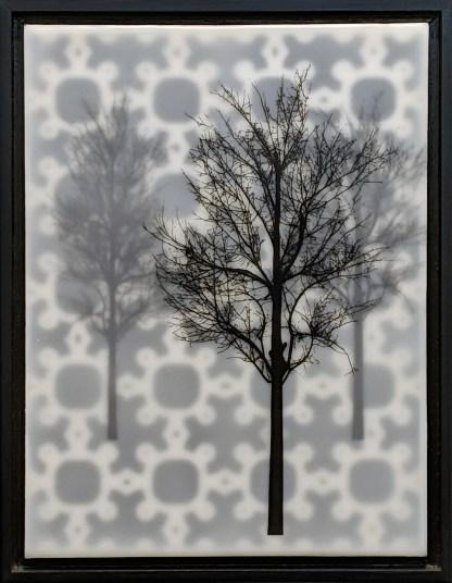 Perl Grove