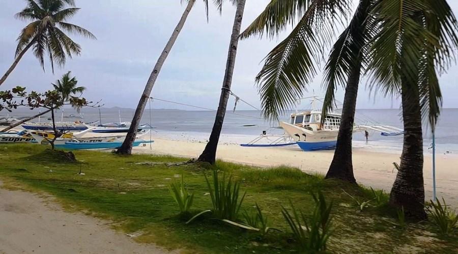 Carabao Island 2