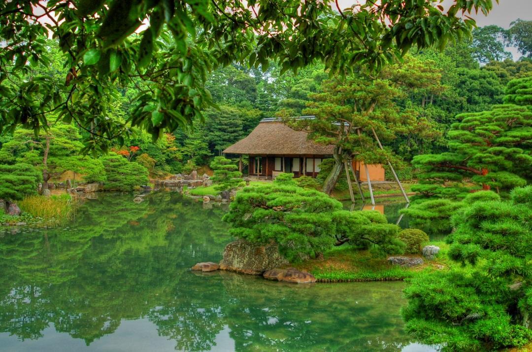garden-kyoto-green