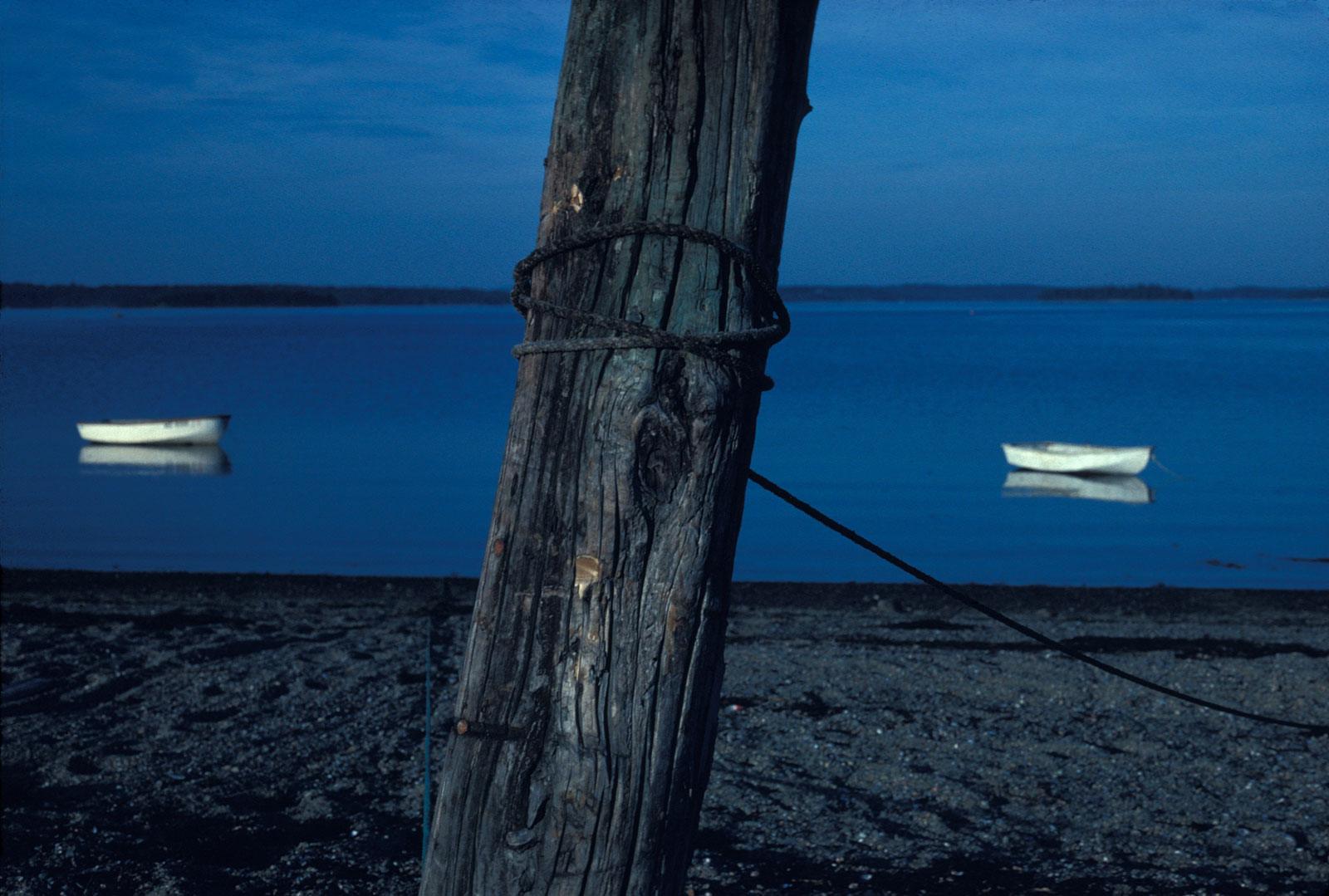 Blue Evening, by Joel Mason.