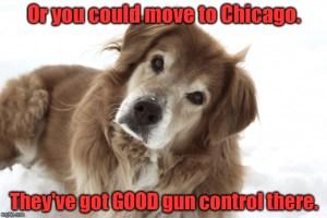 good_gun_control
