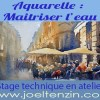 https://joeltenzin.fr/boutique/stages/aquarelle-maitriser-le-dosage-de-leau/