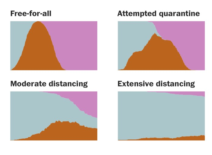 image of graphs used to show the effect of coronavirus with different social strategies