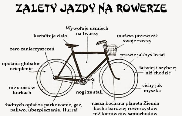 Znalezione obrazy dla zapytania rower cytat