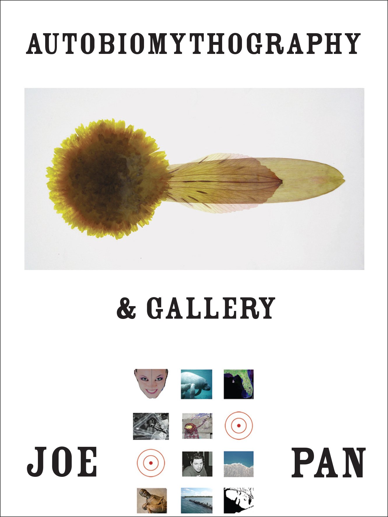 Autobiomythography & Gallery, Joe Pan, 2007, poetry