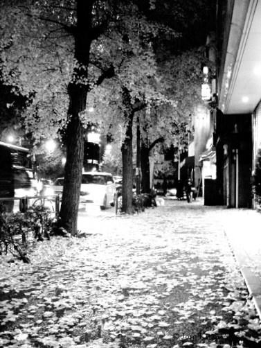 Tokyo, 2006