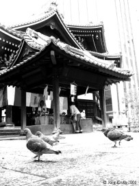Kyoto, 2006