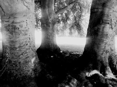 Selbstgespräche II © Kruth 2016