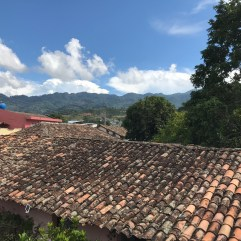 view from the clinic roof