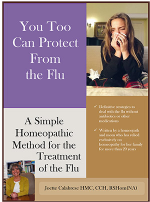 Cover_Flu_Booklet